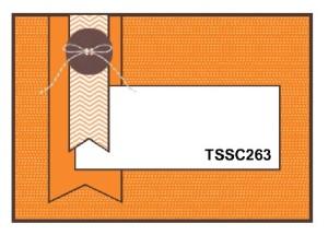 TSSC263