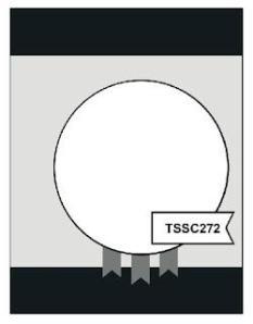 TSSC272
