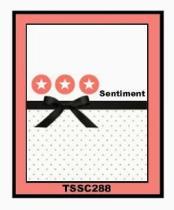 TSSC288