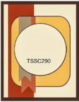 TSSC290