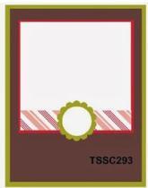 TSSC293