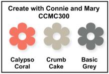 CCMC300