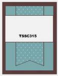 TSSC315