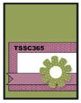 TSSC365