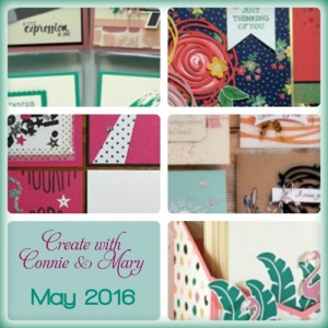 May 2016 Mini Session Collage